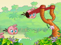 Online Game Angry Birds Stella