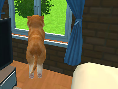 Online hra Dog Simulator: Puppy Craft