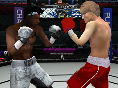 Online Game Punch Boxing Championship