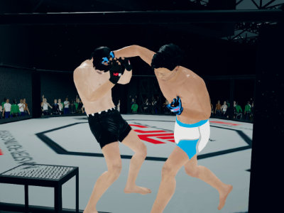 Online hra MFS: MMA Fighter