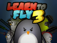 Online Game Learn to Fly 3